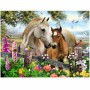 Horses In The Summer 3D Picture